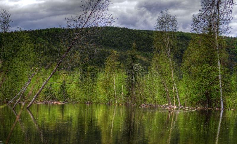 Route perdue d'étang de castor, rivière, Woodstock NH 03262 photo stock