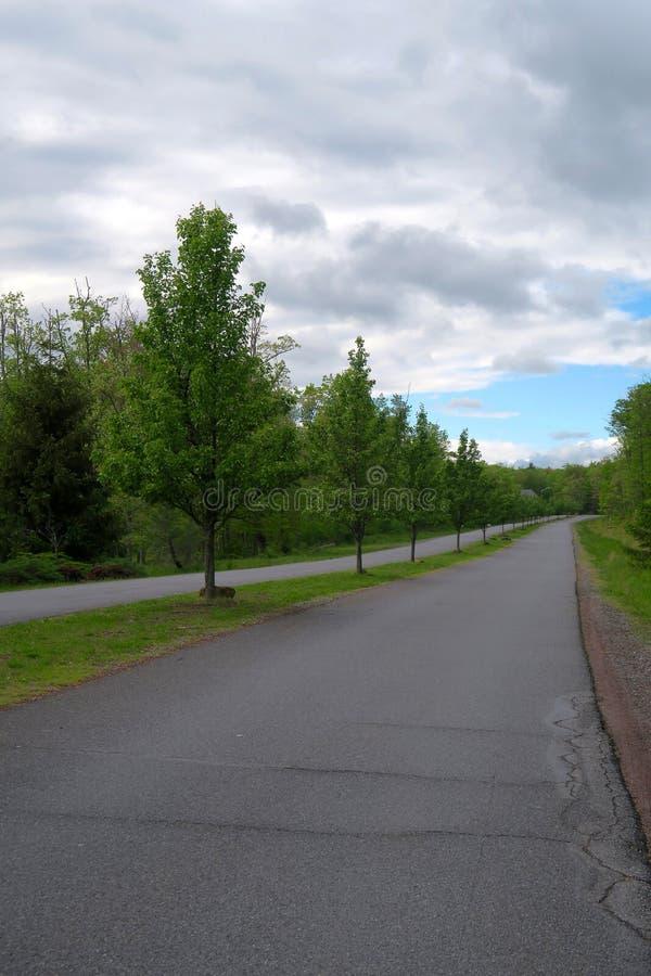 Route rayée par arbre rural avec les ruelles séparées photographie stock