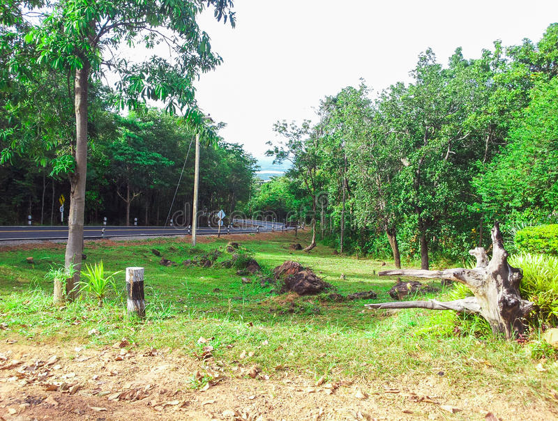 Download Route rurale image stock. Image du herbe, horizontal - 45364537
