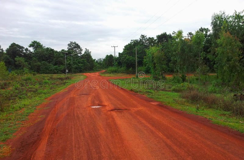 Download Route rurale image stock. Image du eucalyptus, stationnement - 45371761