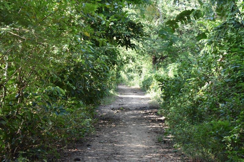 Route rurale au Cambodge images stock