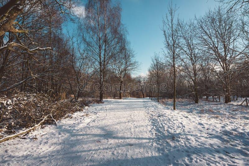 Route rurale couverte de neige abandonnée photographie stock libre de droits