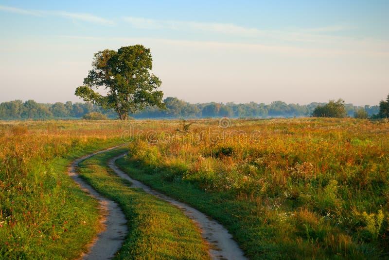 Route rurale dans un domaine photos stock