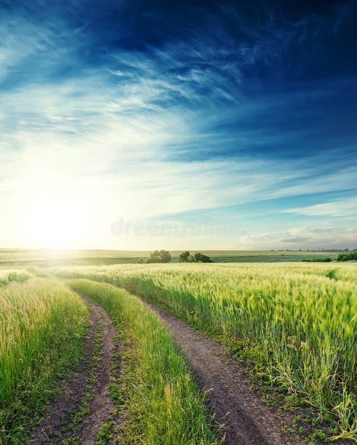 Route rurale dans un domaine vert à l'horizon et au coucher du soleil en ciel bleu profond avec des nuages photographie stock libre de droits