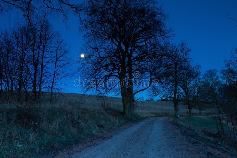 Route rurale de Sandy la nuit photographie stock