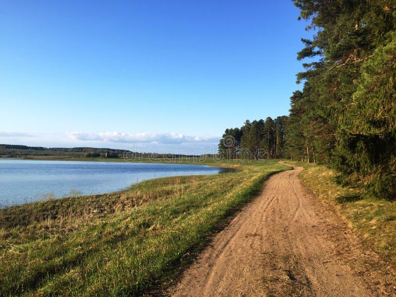 Route rurale entre le lac et la forêt images libres de droits