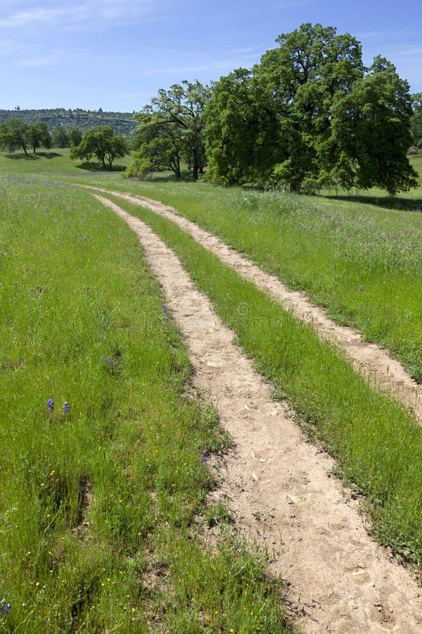 Route rurale, région boisée de la Californie photographie stock libre de droits