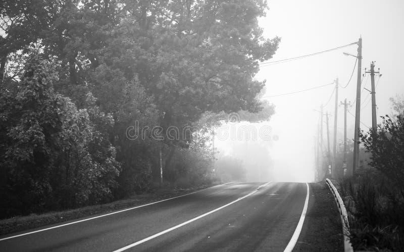 Route rurale vide dans le matin brumeux photos stock