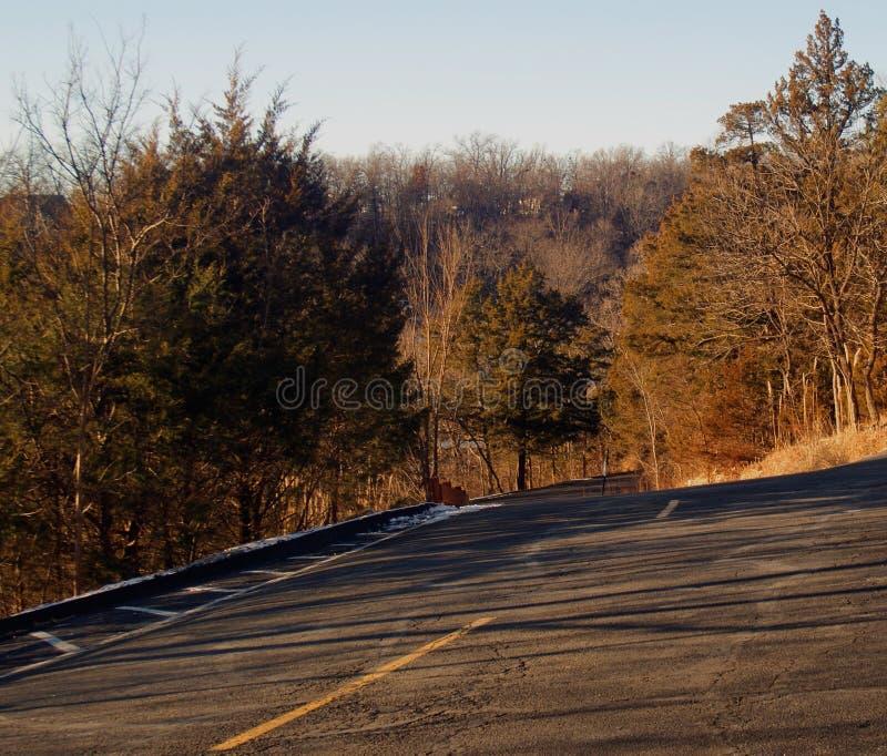 Route se dirigeant vers le bas dans la forêt à la lumière du soleil en bronze d'hiver photos stock