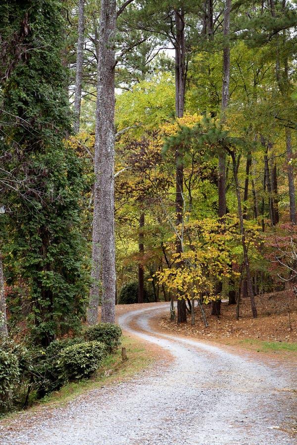 Route sinueuse l'après-midi d'automne images libres de droits