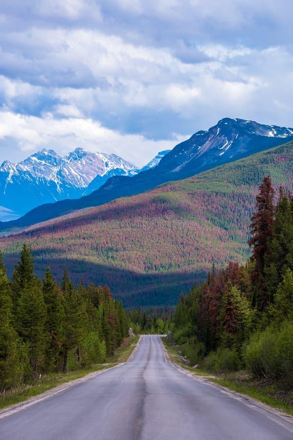 Route sur les montagnes image libre de droits