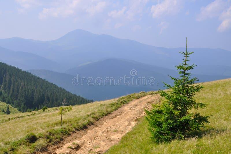 Route sur un flanc de coteau. images stock