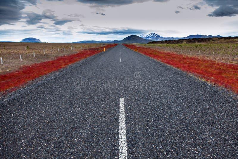 Route vide d'alphalt sur l'Islande image stock