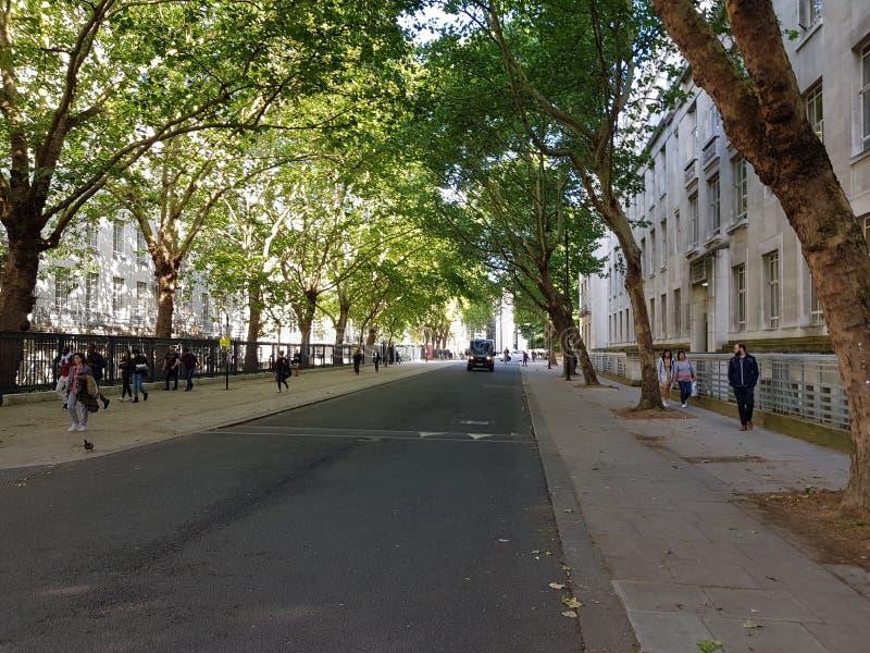 Route vide d'Arbored photo libre de droits