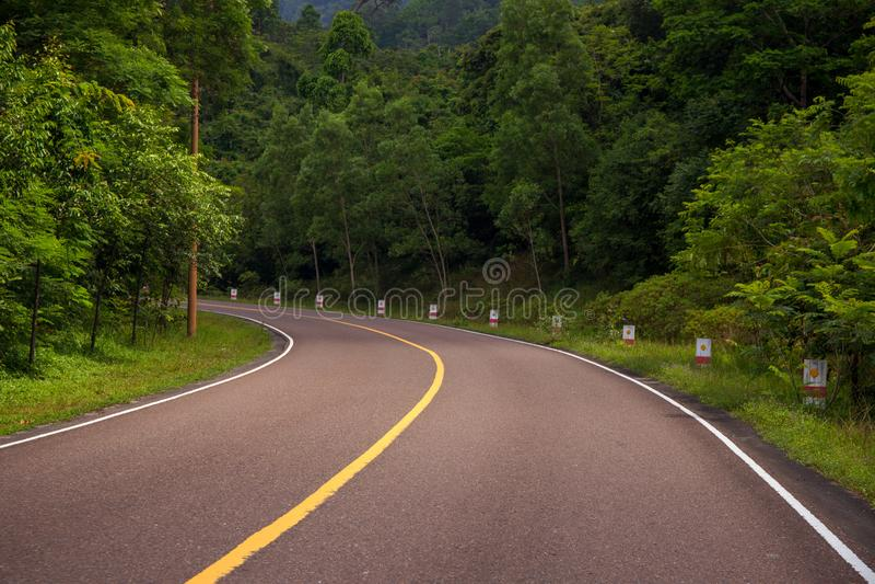 Route vide dans le paysage extérieur de voyage d'été sauvage de forêt Route vide avec le bord de la route vert photographie stock