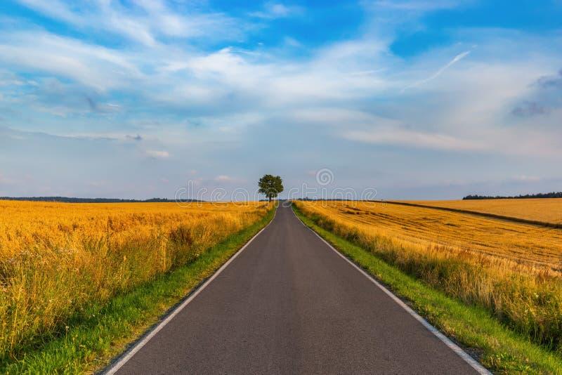 Route vide de campagne au coucher du soleil horizontal tch?que rural photos stock