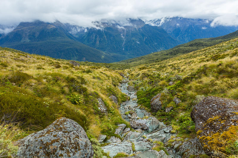 Routeburn Track royalty free stock photo
