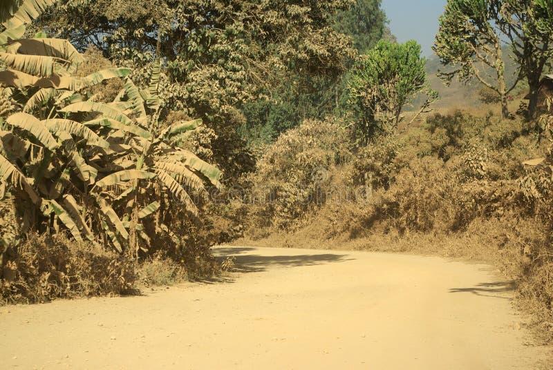Routes africaines image libre de droits