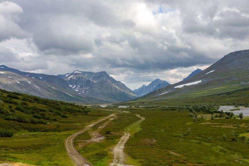 Routes dans la toundra en été photographie stock libre de droits