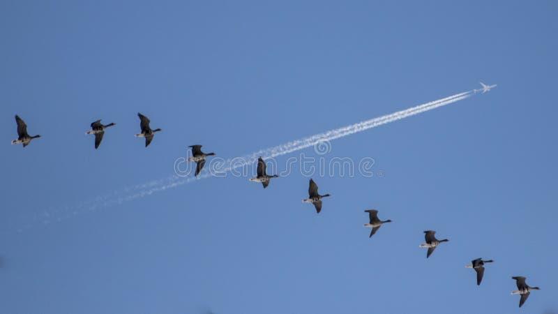 Routes de croisement dans le ciel photos stock