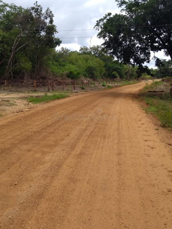Routes rurales Brésil photo stock