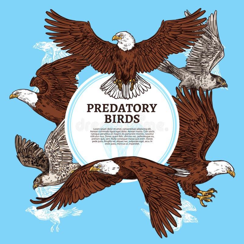 Rov- fåglar, skissar örnen eller falken royaltyfri illustrationer