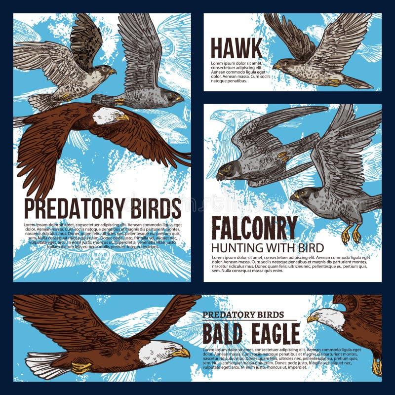 Rov- hök- och örnfåglar, falkenerarkonstjakt stock illustrationer