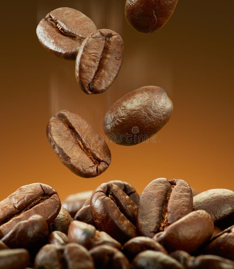 Rovesciamento dei chicchi di caffè immagini stock libere da diritti