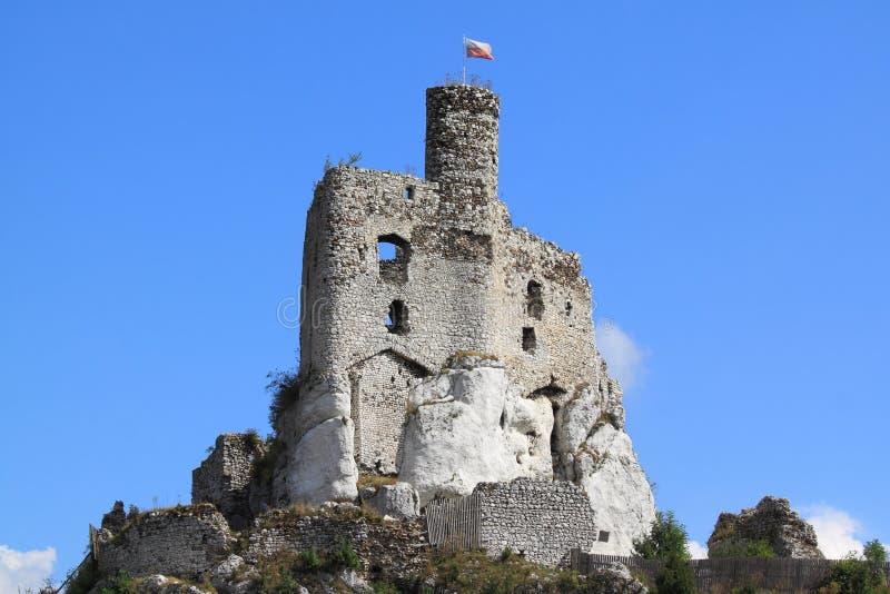 Rovina del castello fotografia stock libera da diritti