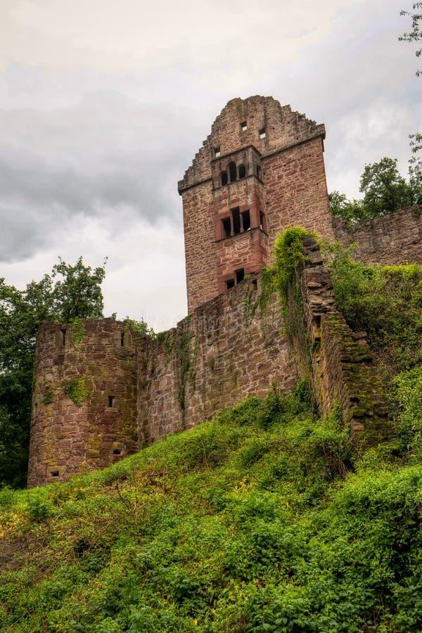 Rovina Minneburg del castello lungo la traccia di escursione interurbana Neckarsteig immagini stock