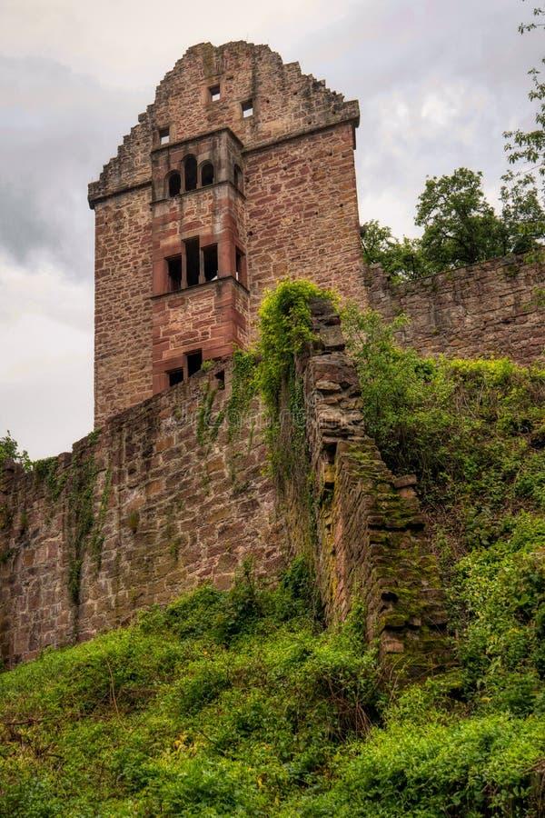 Rovina Minneburg del castello lungo la traccia di escursione interurbana Neckarsteig immagine stock