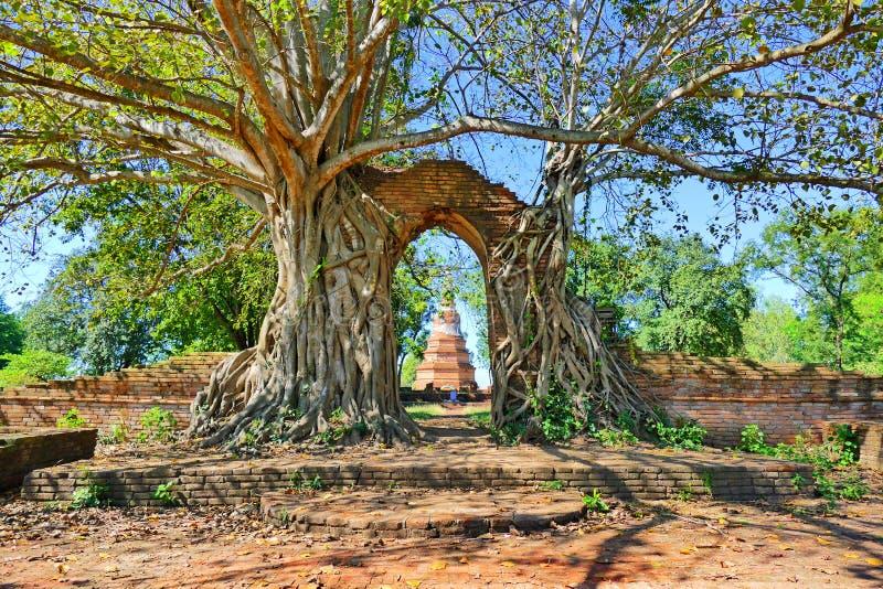 Rovine antiche abbandonate del tempio buddista di Wat Phra Ngam a partire dal periodo tardo di Ayutthaya nella città storica di A immagini stock