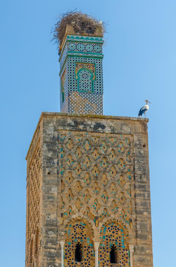 Rovine antiche della necropoli di Chellah con la moschea ed il mausoleo nella capitale Rabat, Marocco, Nord Africa del ` s del Ma fotografia stock