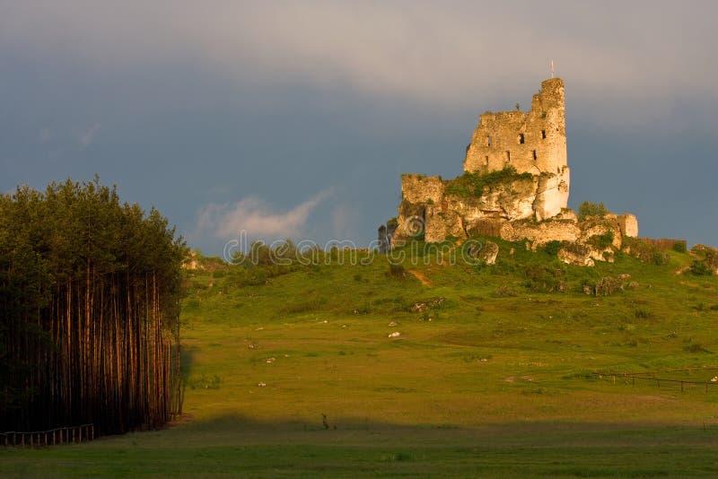 Rovine del castello ad una luce di tramonto fotografia stock libera da diritti