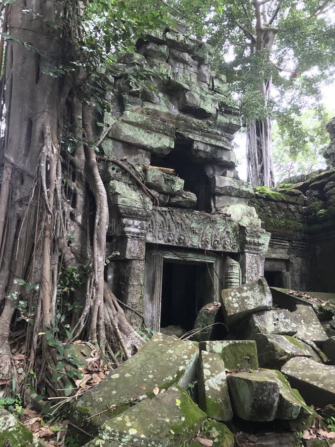 Rovine del tempio in Cambogia fotografie stock