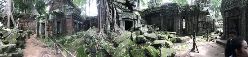 Rovine del tempio in Cambogia fotografia stock