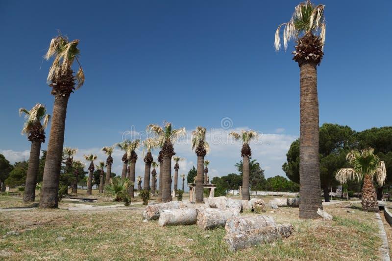 Rovine della citt? antica di Hierapolis Pamukkale La Turchia immagini stock libere da diritti