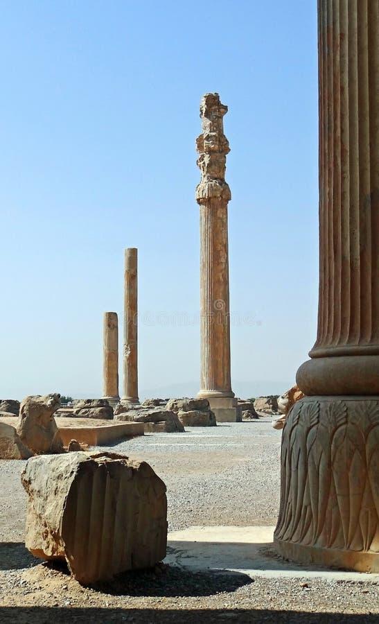 Rovine delle colonne persiane in Persepolis, Iran fotografia stock libera da diritti