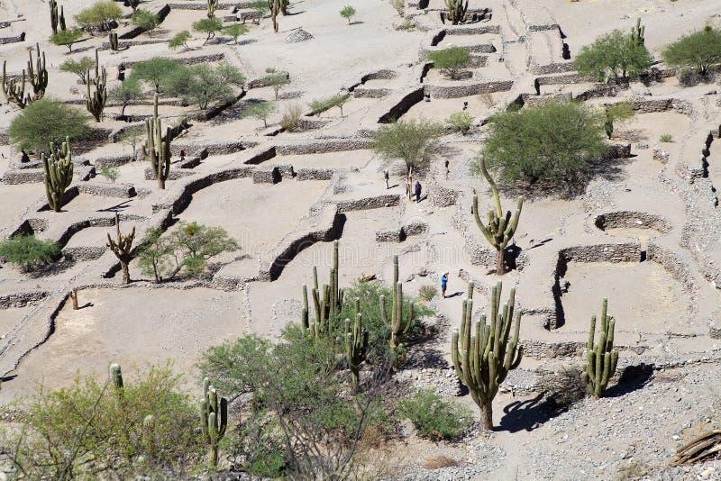 Rovine di Quilmes nelle valli Calchaqui, provincia di Tucuman, Argentina immagini stock