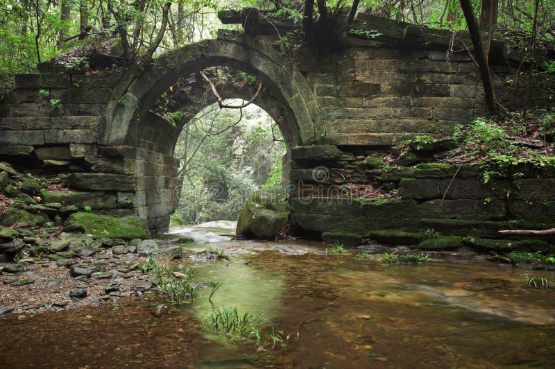 Rovine di un ponte antico nella foresta fotografia stock libera da diritti