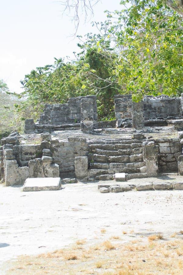 Rovine maya fotografia stock