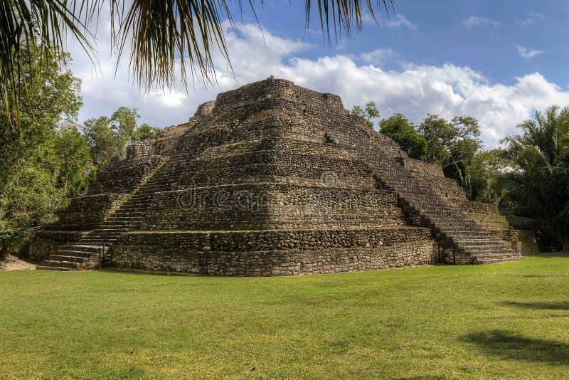 Rovine maya immagini stock libere da diritti