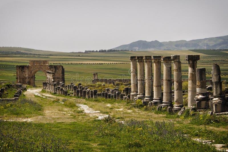 Rovine romane di Volubilis. fotografia stock libera da diritti