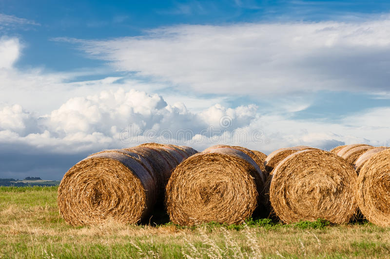 Row of bales royalty free stock images