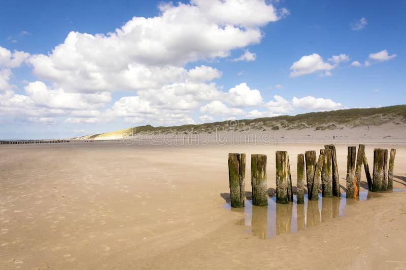 A row of beach bollards on the beach of Schoorl, North Holland, the Netherlands royalty free stock photo