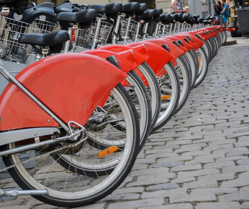 Row of bicycles for rent. stock photos