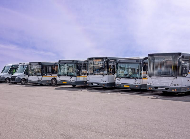Row of the big buses royalty free stock photography