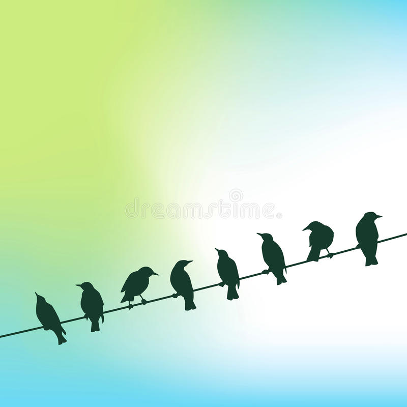 Row of birds on wire. Illustration of row of silhouetted birds perched on wire, sky in background vector illustration