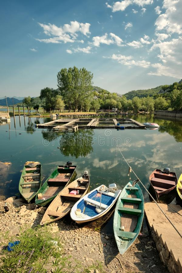 Row Boats On Lake Skadar National Park, Montenegro. Row boats on Karuc bay in Lake Skadar National Park, Montenegro royalty free stock images