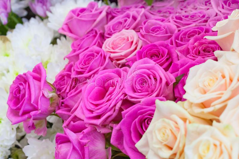 Bouquets of flowers: tea and pink roses, white chrysant royalty free stock images